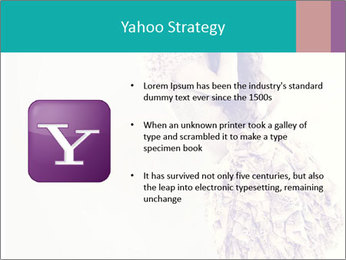 0000080069 PowerPoint Template - Slide 11