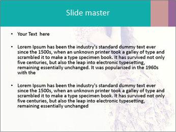 0000080069 PowerPoint Template - Slide 2