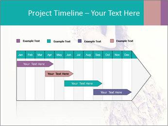 0000080069 PowerPoint Template - Slide 25