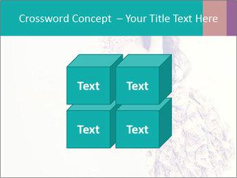 0000080069 PowerPoint Template - Slide 39
