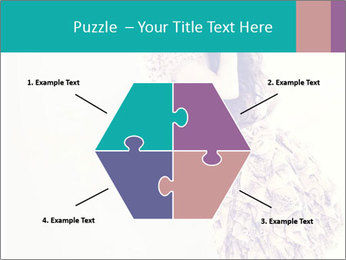 0000080069 PowerPoint Template - Slide 40