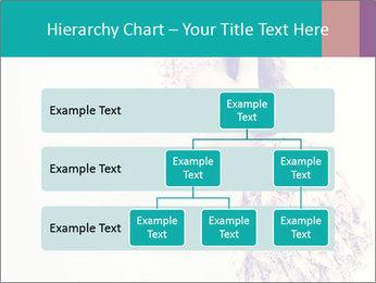 0000080069 PowerPoint Template - Slide 67