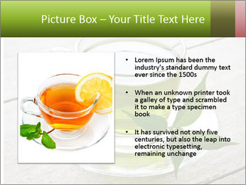 0000080070 PowerPoint Templates - Slide 13