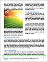 0000080077 Word Template - Page 4
