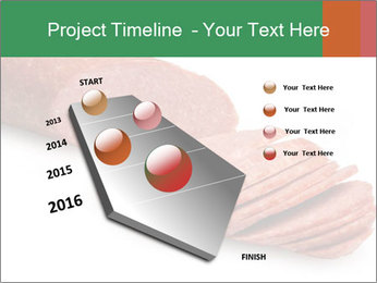 0000080078 PowerPoint Template - Slide 26
