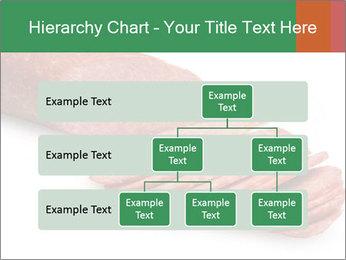 0000080078 PowerPoint Template - Slide 67