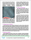 0000080080 Word Template - Page 4