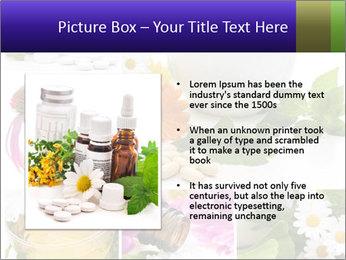 0000080085 PowerPoint Template - Slide 13