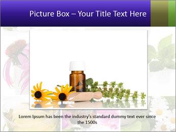 0000080085 PowerPoint Templates - Slide 15