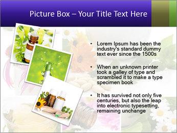 0000080085 PowerPoint Template - Slide 17
