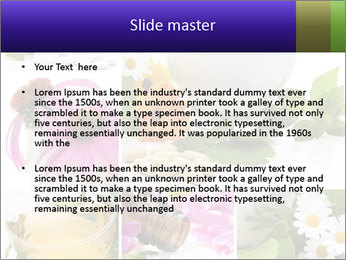 0000080085 PowerPoint Templates - Slide 2