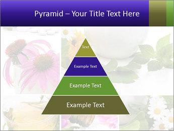 0000080085 PowerPoint Templates - Slide 30