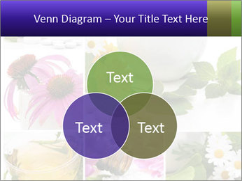 0000080085 PowerPoint Template - Slide 33