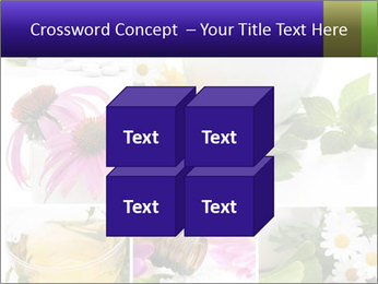 0000080085 PowerPoint Templates - Slide 39
