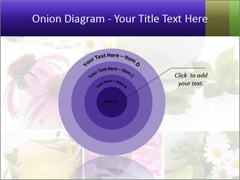 0000080085 PowerPoint Template - Slide 61