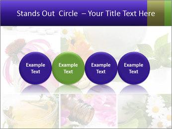 0000080085 PowerPoint Template - Slide 76