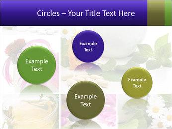 0000080085 PowerPoint Template - Slide 77