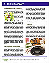 0000080085 Word Template - Page 3