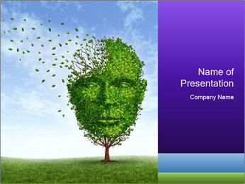 0000080086 PowerPoint Template - Slide 1