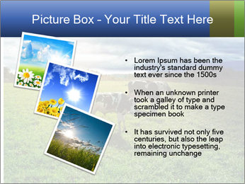 0000080104 PowerPoint Templates - Slide 17