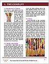 0000080106 Word Template - Page 3