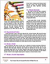 0000080106 Word Templates - Page 4