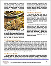 0000080107 Word Templates - Page 4