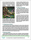 0000080115 Word Template - Page 4