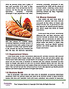 0000080119 Word Templates - Page 4