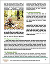0000080121 Word Templates - Page 4