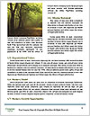 0000080126 Word Template - Page 4
