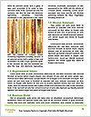0000080127 Word Template - Page 4