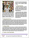 0000080136 Word Templates - Page 4
