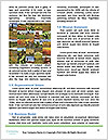 0000080143 Word Templates - Page 4
