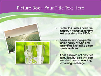 0000080149 PowerPoint Templates - Slide 20