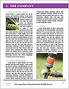 0000080149 Word Template - Page 3