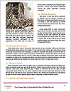 0000080154 Word Template - Page 4