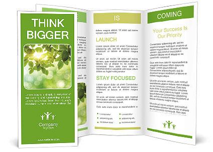 0000080158 Brochure Template