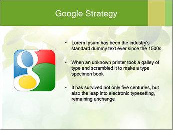 0000080158 PowerPoint Template - Slide 10