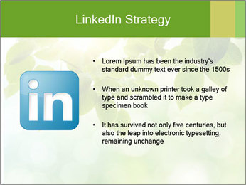 0000080158 PowerPoint Template - Slide 12