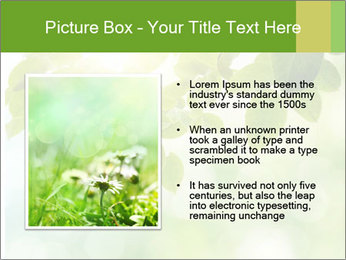 0000080158 PowerPoint Templates - Slide 13