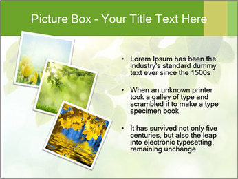 0000080158 PowerPoint Templates - Slide 17
