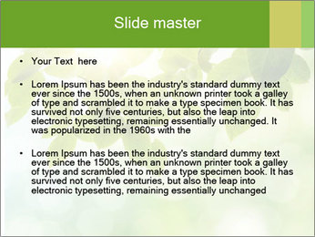 0000080158 PowerPoint Templates - Slide 2