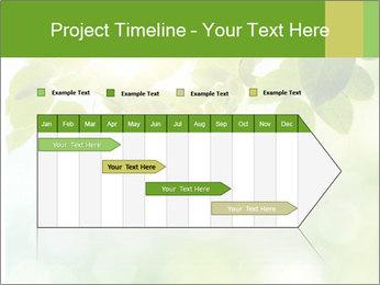 0000080158 PowerPoint Template - Slide 25