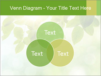 0000080158 PowerPoint Templates - Slide 33