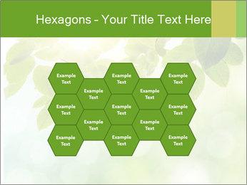 0000080158 PowerPoint Template - Slide 44