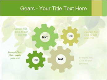 0000080158 PowerPoint Templates - Slide 47