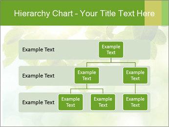 0000080158 PowerPoint Template - Slide 67