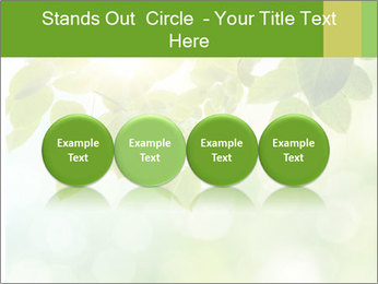 0000080158 PowerPoint Templates - Slide 76