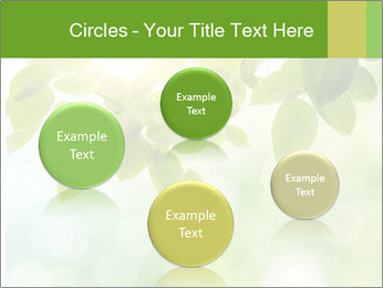 0000080158 PowerPoint Templates - Slide 77